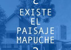 ¿Existe el Paisaje Mapuche?