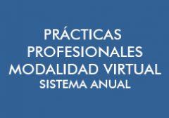 Prácticas Profesionales (S. Anual) Modalidad Virtual